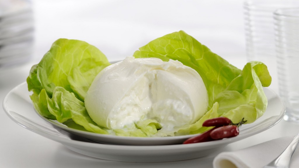 FROZEN BURRATA
