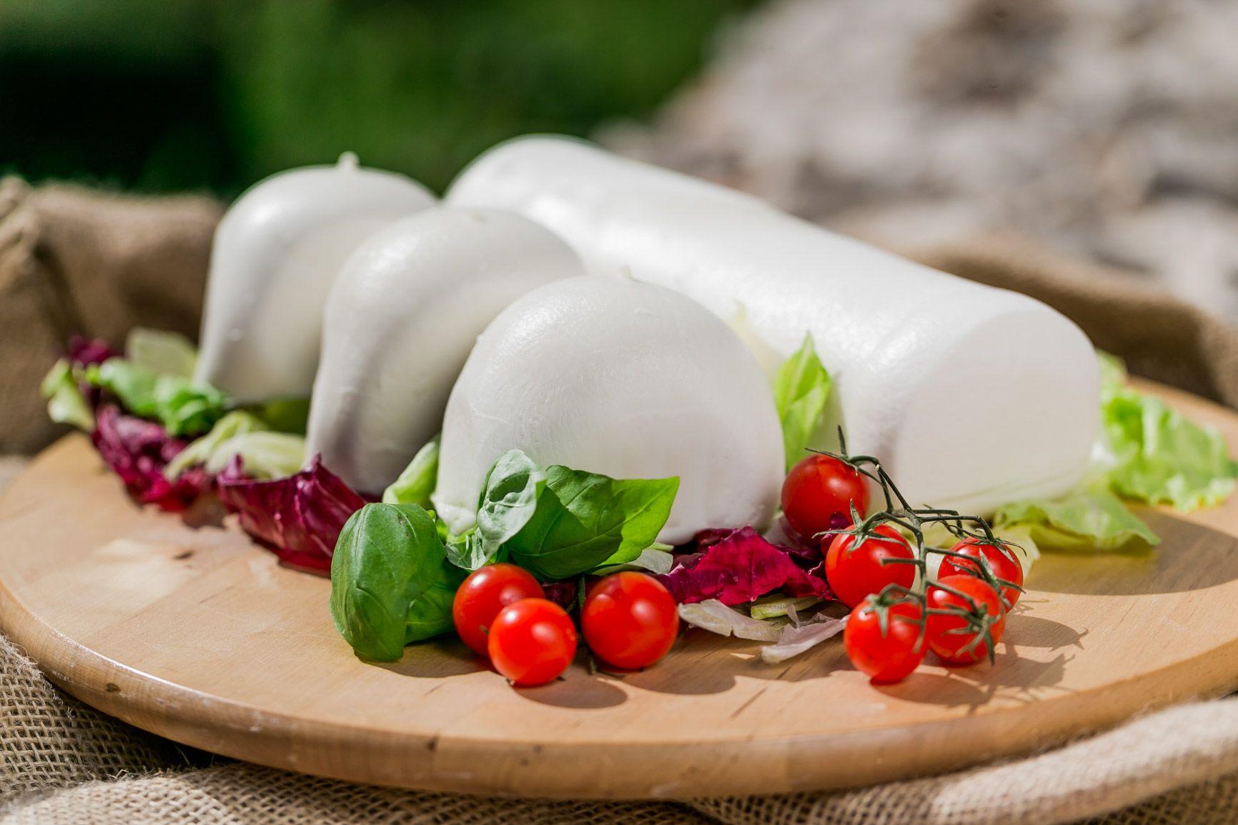 filone mozzarella block cheese totemfood